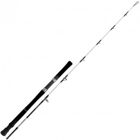 CANNE DAIWA POWERMESH J56 MS AF