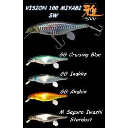 Megabass Vision 100 SW Miyabi