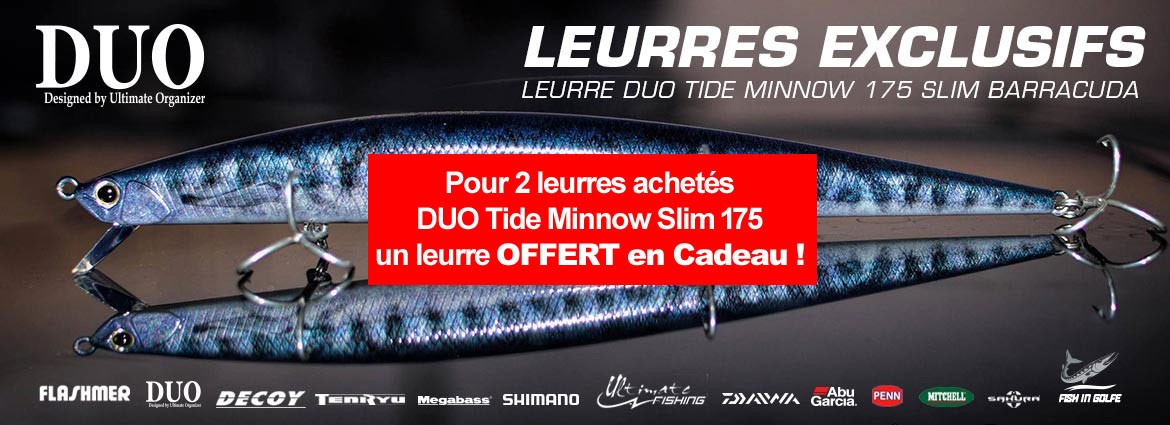 Leurre duo tide minnow slim